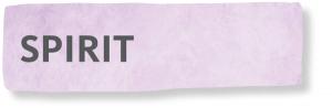Accu-Chek Spirit, Sticker, Tapes, Patches, Lesegerät